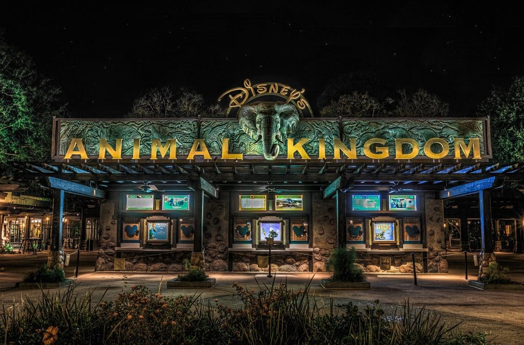 Disney's Animal Kingdom Park Entrance | Walt Disney World, FL